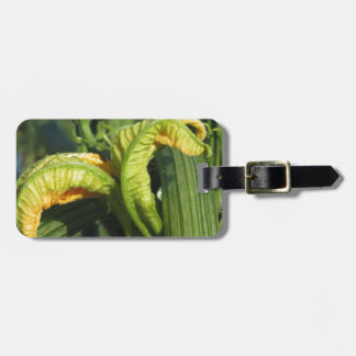 Zucchini plant in blossom in the vegetable garden luggage tag