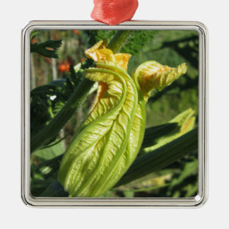 Zucchini plant in blossom in the vegetable garden metal ornament