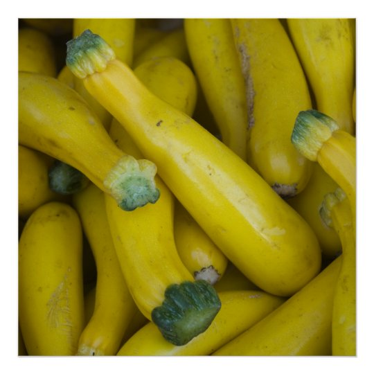 Zucchini Poster