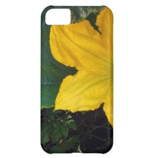 Zucchini Squash Blossom - photograph iPhone 5C Cases