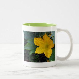 Zucchini Squash Blossom - photograph Two-Tone Coffee Mug