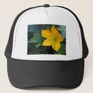 Zucchini Squash Blossom - photograph Trucker Hat