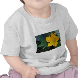 Zucchini Squash Blossom - photograph Tee Shirt