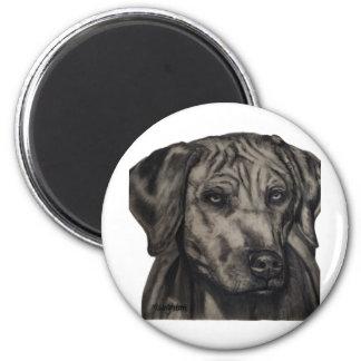 Zulu - Rhodesian Ridgeback Dog Art 2 Inch Round Magnet