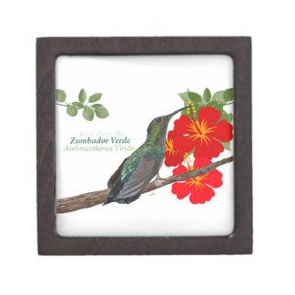 Zumbador Verde/caja de regalo superior del colibrí Caja De Regalo De Calidad