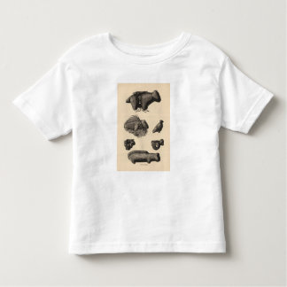 Zuni fetiches toddler t-shirt