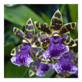 Zygopetalum Orchid Card / Invitation