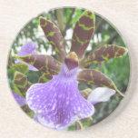 Zygopetalum Orchid Coasters