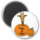 ZZ- jirafa en un imán de Halloween de la calabaza